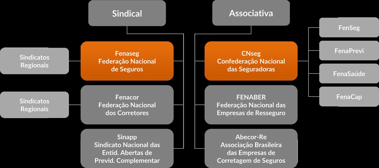 representacao-institucional2.png